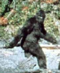 bigfoot.  yes, really.
