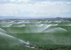 irrigation to prevent desert
