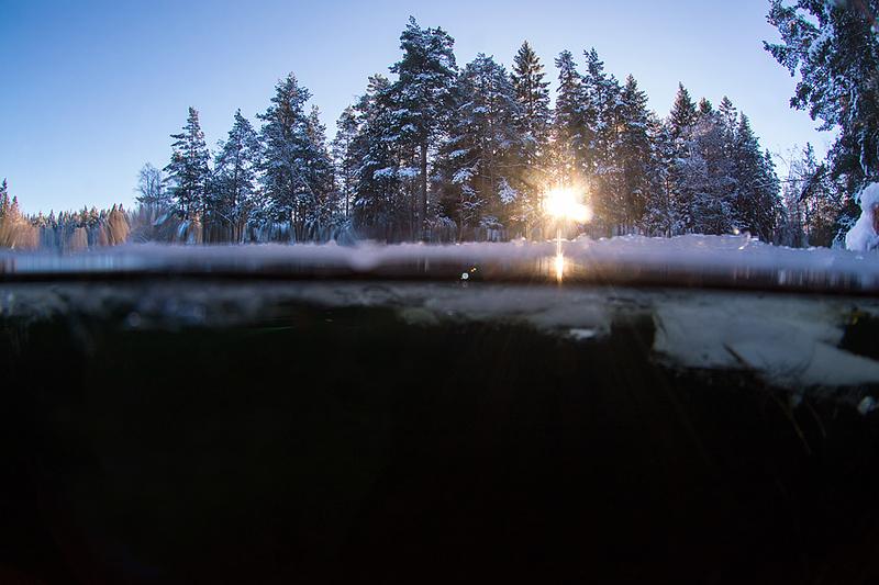 Vinterland, januari