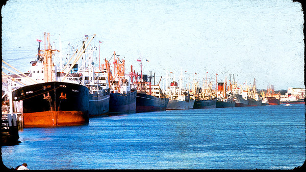 Bunch of freighters berthed along the Hamilton Reach of the Brisbane River say around 1965. Ferry terminal just to the left. The ships have wharves more towards the river mouth these days. Guess most of those ships shown would have been scrapped by now.