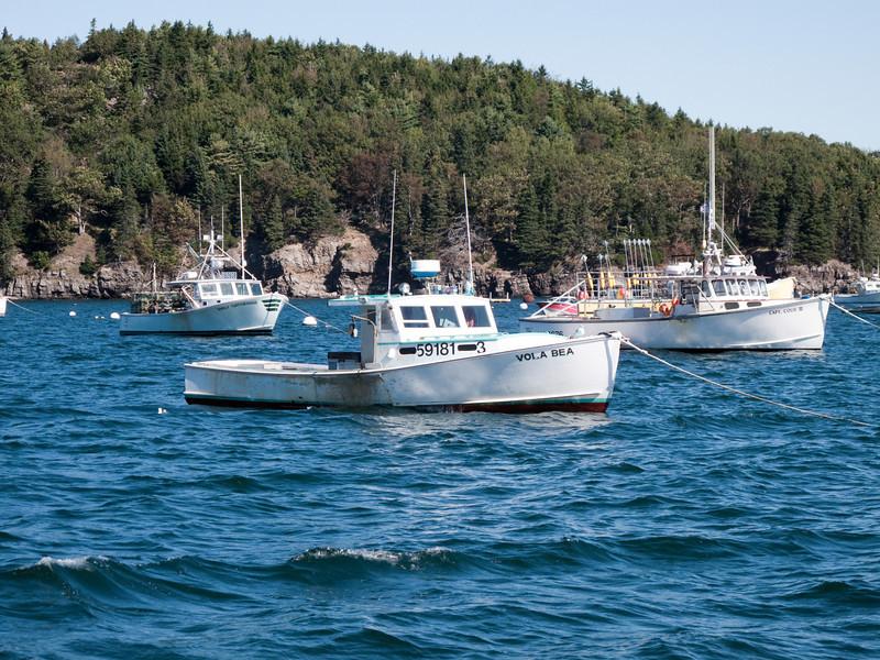 Another shot of Bar Harbor fishing fleet.