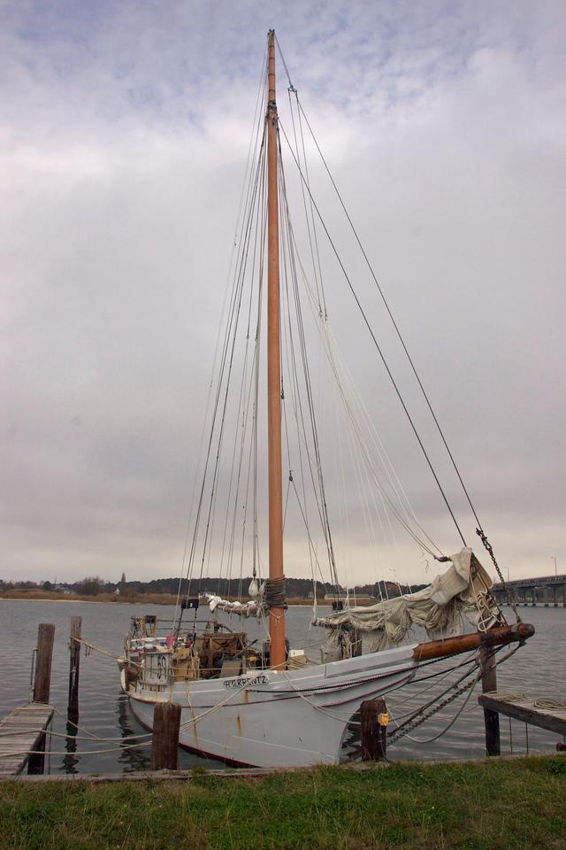 Bullnose on a skipjack