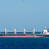 """Cargo ship """"Taokas Wisdom"""" off the coast at Hayward Point."""
