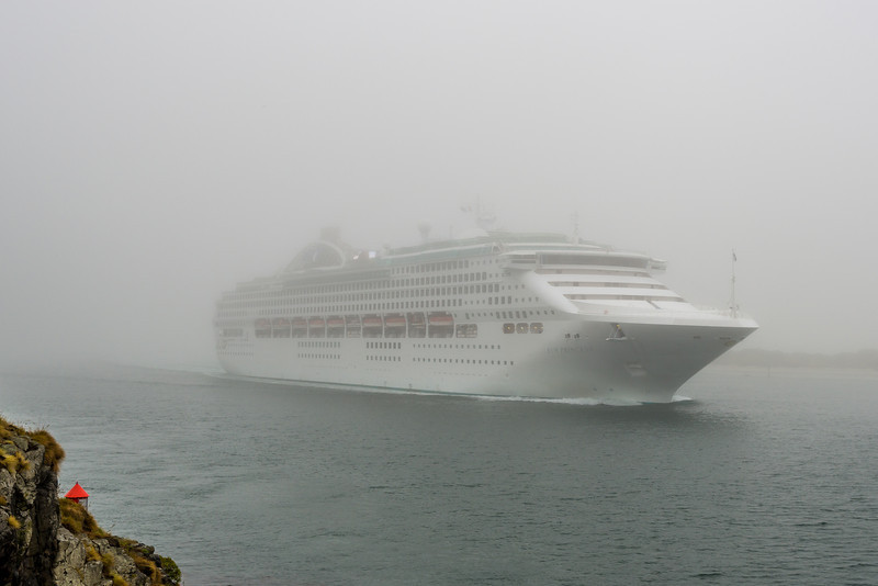 The cruiseship Sun Princess sails past Harrington Point, Otago Peninsula