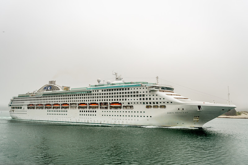 The cruiseship Dawn Princess sails past Harrington Point, Otago Peninsula