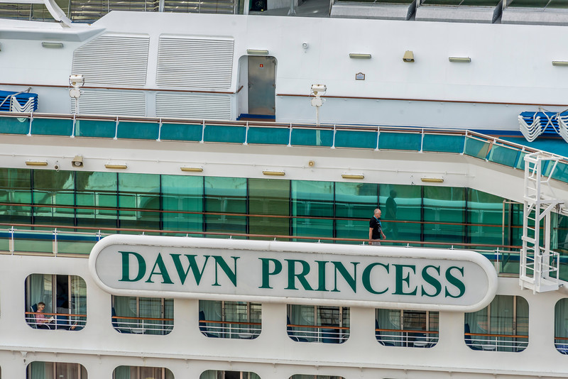 Dawn Princess Cruiseship