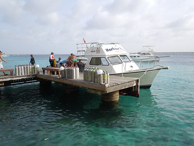 We did our diving with one of the local resorts.  Although they had boats, we did all shore dives.