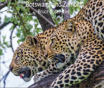 Botswana Zambia
