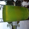 Spring Green MD