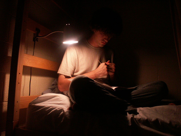 Roommate working