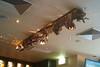 funky ceiling in sydney pub