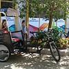 Modern rickshaws for Boston tourists...