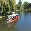The Swan Boat...