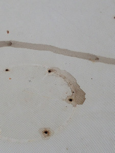 STICKY GOOEY WATER LEACHING FROM SCREW HOLES