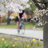 Cycling in Spring