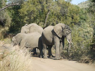 Botswana 2009
