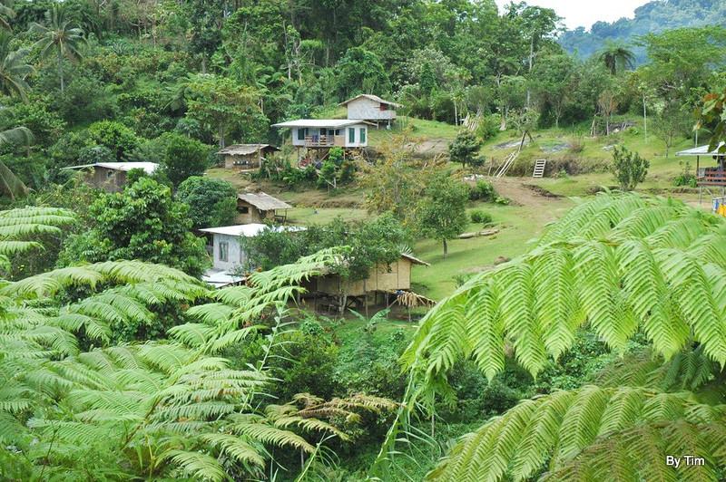 Upper reaches of Namatoia village