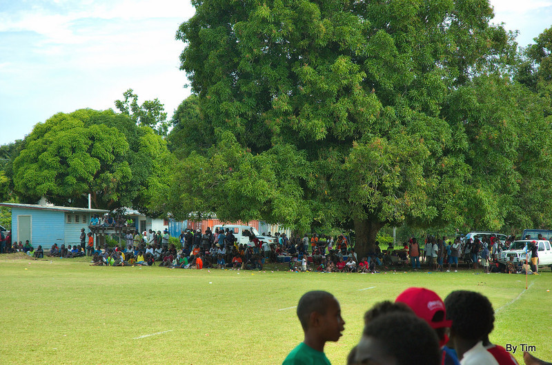 The main stand at the Hutagena football ground is a mango tree