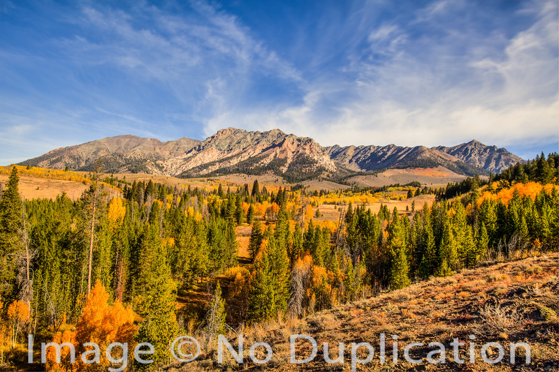 Fall color in the Boulder Mountains, Idaho