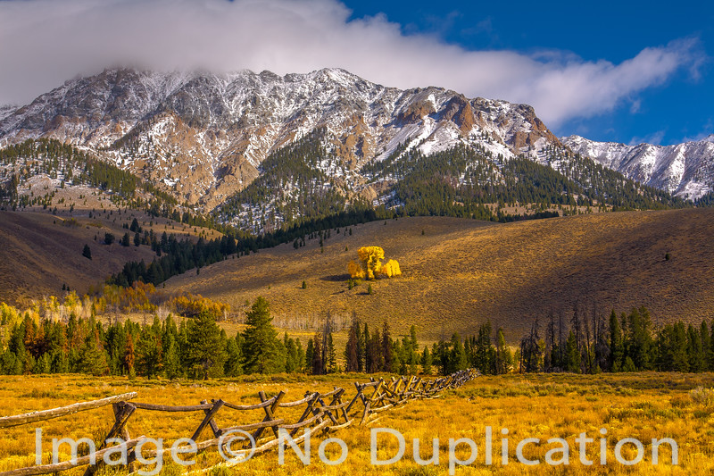 Boulder Mountains and Cottonwoods