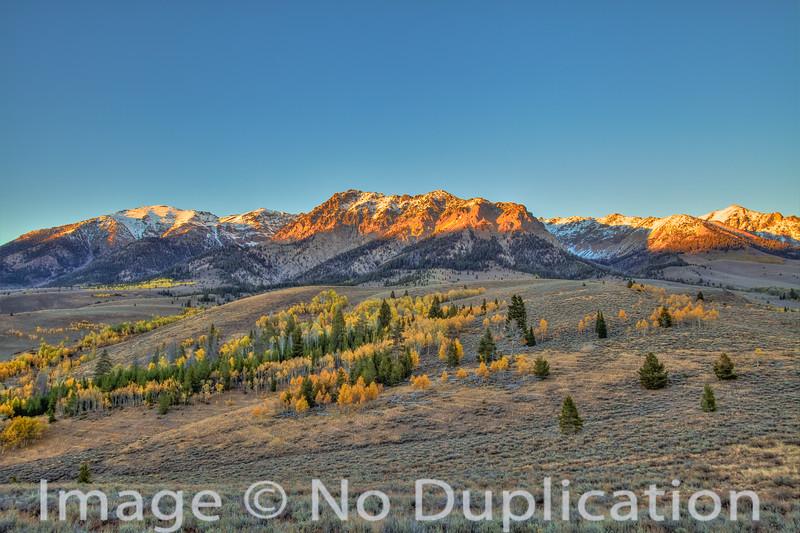 Fall colors, Boulder Mountains, Idaho