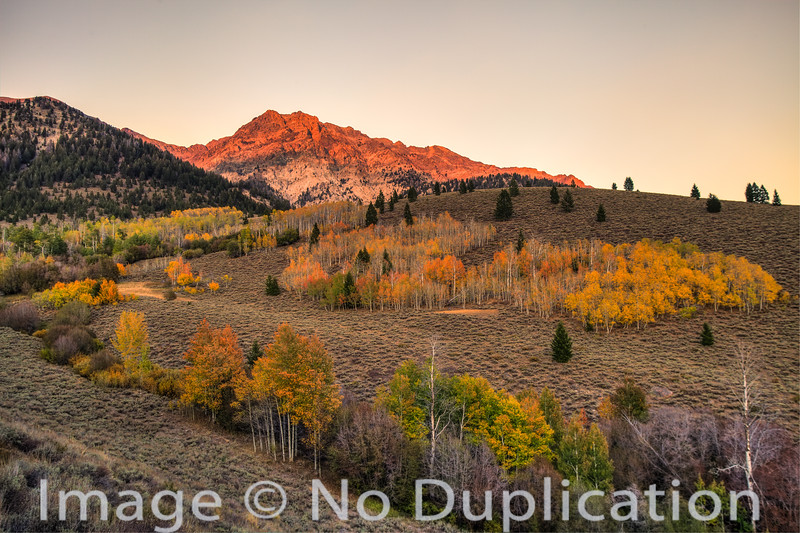 Fall colors in the Boulder Mountains, Idaho