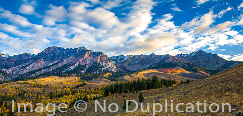 Fall colors in the Boulder Mountains