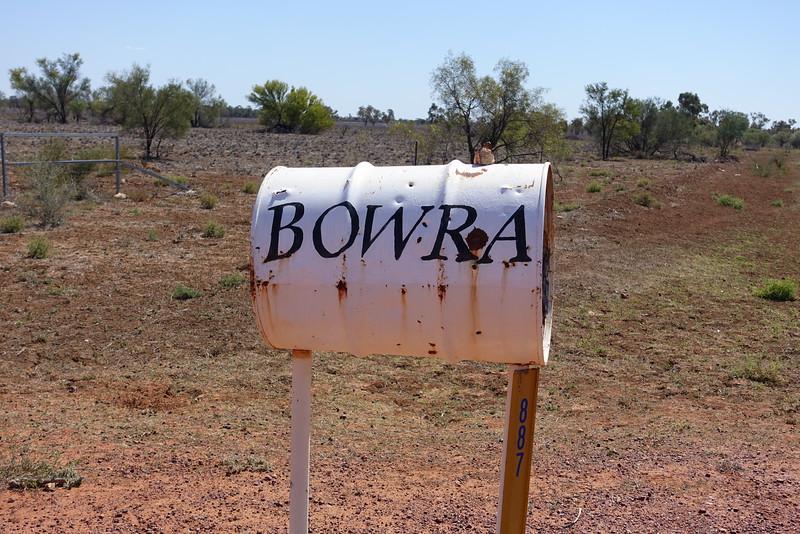 Bowra Station