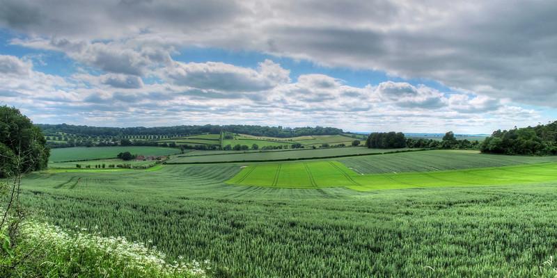 View across fields toward Whitsbury.