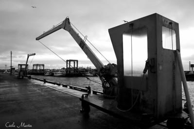 Port du Guilvinec (2011)