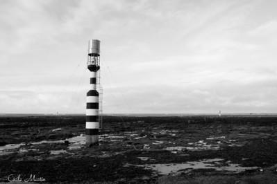 Penmarc'h, Finistère (2011)