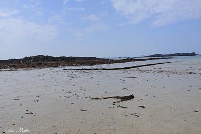 Marée basse à Saint-Malo