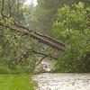 06-01-11: Mill Lane