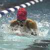 10/24/2017 Mike Orazzi | Staff<br /> Bristol Eastern's Brianna Ogonowski during Tuesday's swim meet with Central.