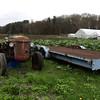 4/27/2017 Mike Orazzi | Staff<br /> Zarrella Farms in Plainville.