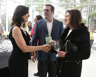 4/1/2017 Mike Orazzi | Staff Mary Lynn Gagnon, director of the Bristol Hospital Development Foundation greets Michael and Danielle Kaplan during the foundation's Festival of Wines & Spirits held at the DoubleTree by Hilton in Bristol Saturday night. The money raised this year will go toward a future renovation project at the hospital's Emergency Center.