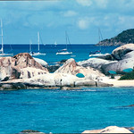(Pork) Dreams of the Caribbean