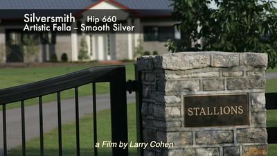 # 660  Silversmith