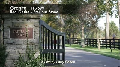 # 599  Granite