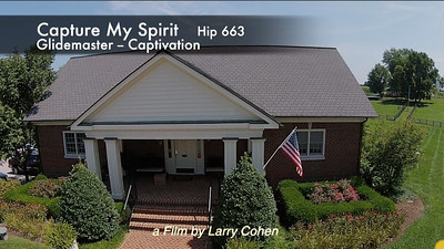 # 663 Capture My Spirit