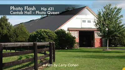 # 431 Photo Flash