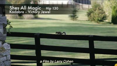 # 130 Shes All Magic
