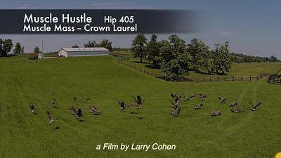 # 405 Muscle Hustle