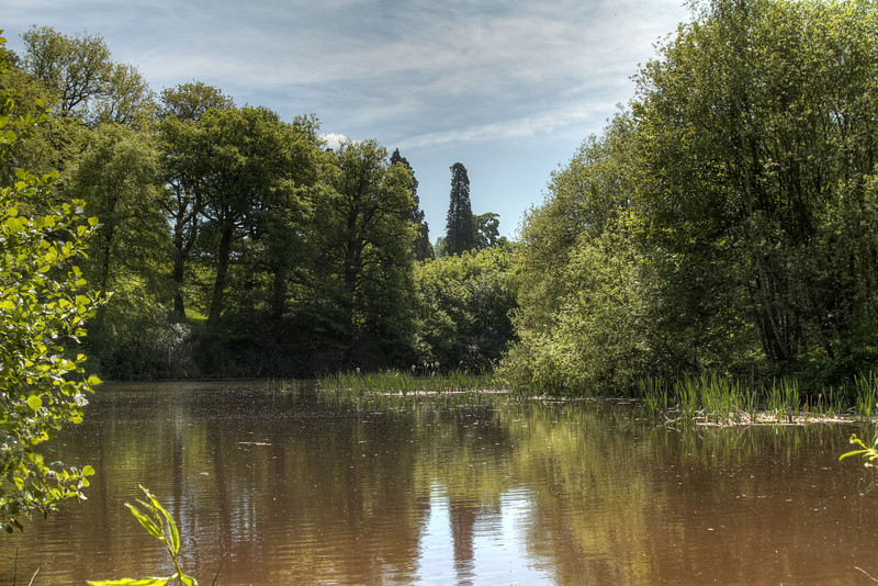 The lake at Brockhampton