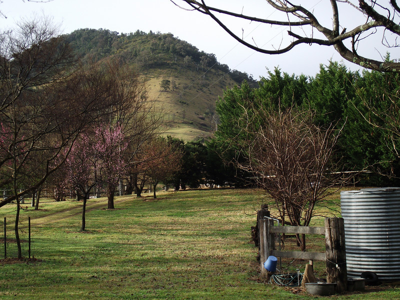 Apple Tree Flat, Mudgee NSW