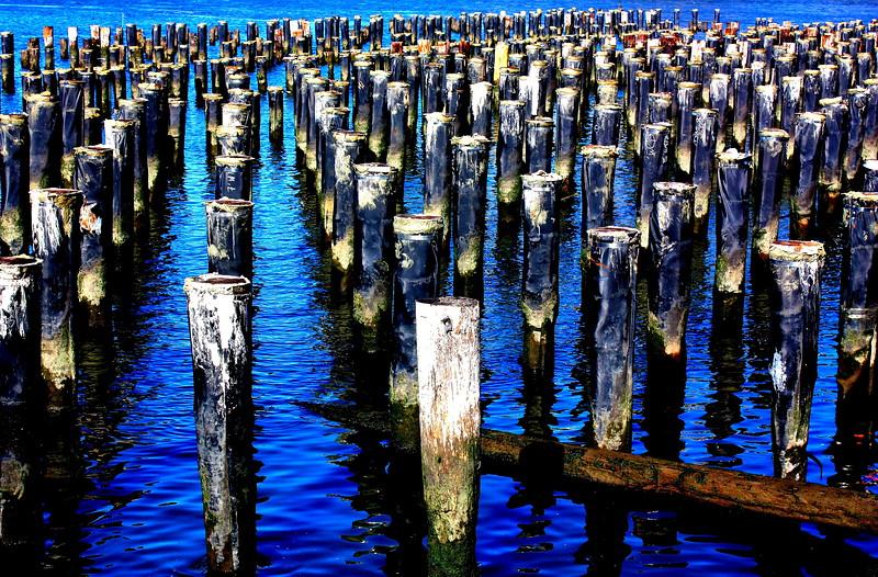 Brooklyn Bridge Park  -- click image for larger view