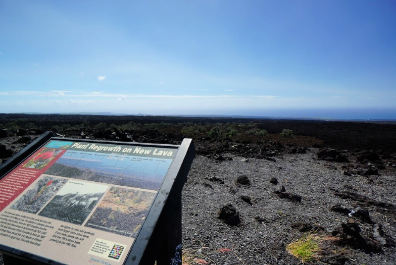 Lava fields span much of the Big Island with this one just south of Kailua-Kona