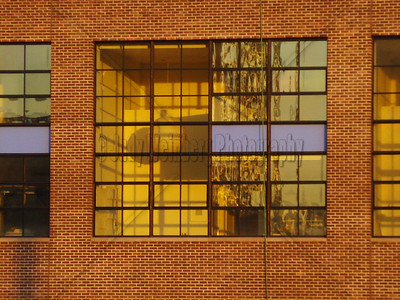 Close up of Windows with Blue Panes - NYC
