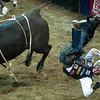 Bullriding031216 029.JPG