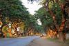 pyawbwe township